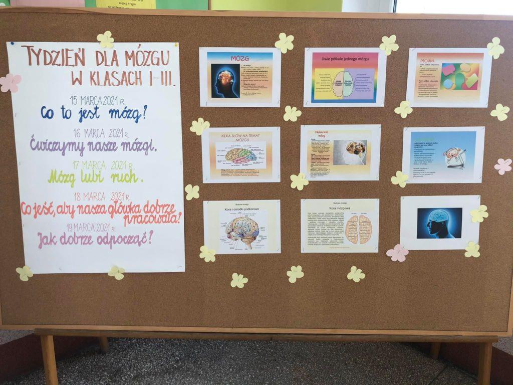 tablica  z ilustracjami dotyczącymi pracy mózgu